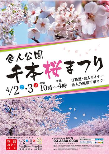 足立区 舎人公園 千本桜まつり
