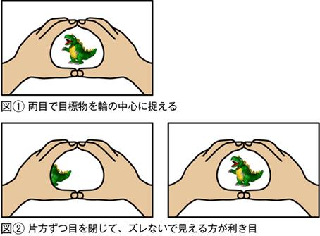 1..両目で対象物を輪の中心に捉える 2.片目ずつ目を閉じて、ズレないで見えるほうが利き目